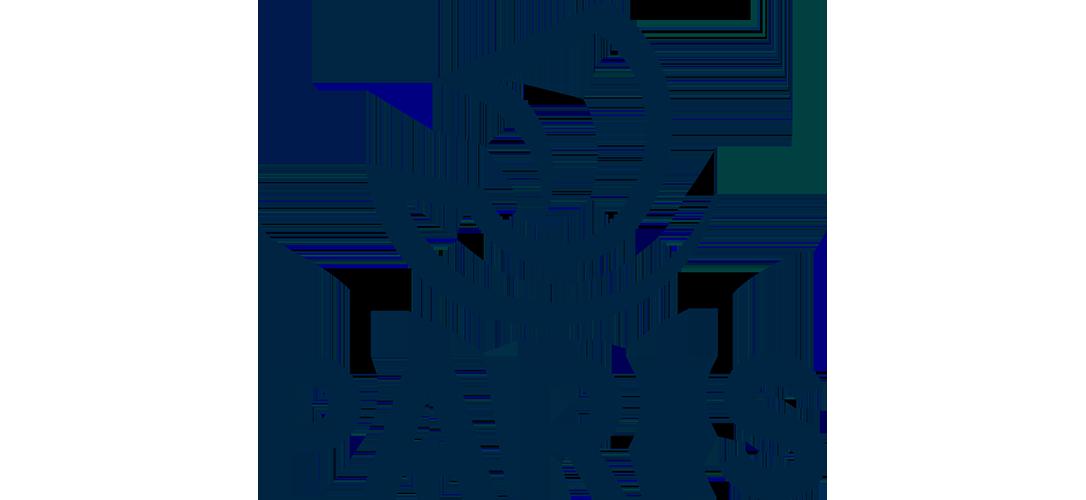 3. Ville de Paris